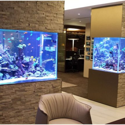 acrylic reef ready aquarium Fresh Images 30 Incredibly Awesome Ideas To Beautify Your Home With Aquariums