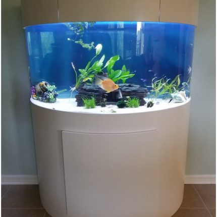 "acrylic reef ready aquarium New Photos Tsunami 120 Gallon 48""Lx24""Wx30""H Half Cylinder Acrylic Aquarium"